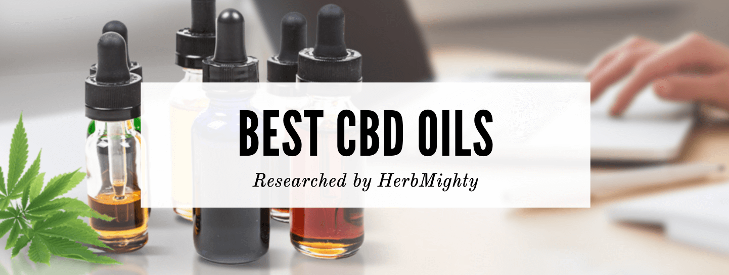The 10 Best CBD Oil Brands — Our Top Picks & Buyer's Guide