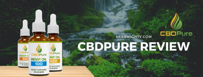 CBDPure Review 2019