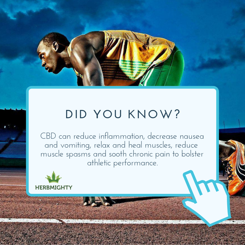 athletes using cbd