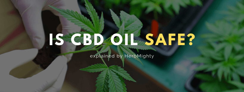 is cbd oil safe?
